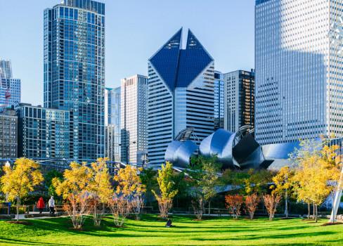 chicago-488x350.jpg