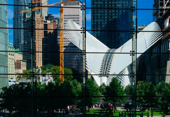 new-york2-2-556x385.jpg