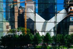 new-york2-239x160.jpg