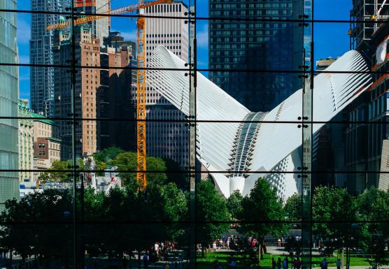 new-york2-556x385.jpg